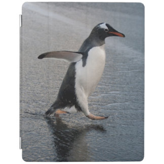 South Georgia Island, Gold Harbor. Gentoo iPad Cover
