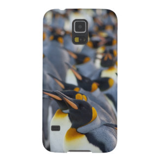 South Georgia Island, Gold Harbor. King 2 Case For Galaxy S5