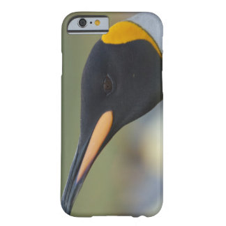 South Georgia Island, Gold Harbor. King penguin 4 Barely There iPhone 6 Case