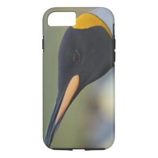 South Georgia Island, Gold Harbor. King penguin 4 iPhone 7 Case