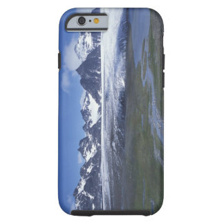 South Georgia Island, Salisbury Plain, Tough iPhone 6 Case