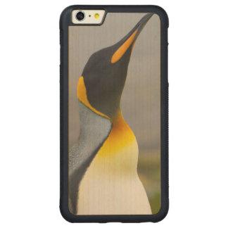 South Georgia. Saint Andrews. King penguin 2 Carved Maple iPhone 6 Plus Bumper Case