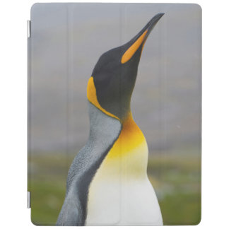 South Georgia. Saint Andrews. King penguin 2 iPad Cover