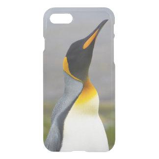 South Georgia. Saint Andrews. King penguin 2 iPhone 8/7 Case