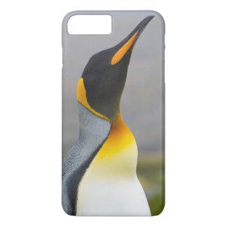 South Georgia. Saint Andrews. King penguin 2 iPhone 8 Plus/7 Plus Case