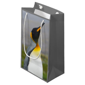 South Georgia. Saint Andrews. King penguin 2 Small Gift Bag