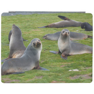 South Georgia. Salisbury Plain. Antarctic fur 1 iPad Cover