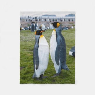 South Georgia. Salisbury Plain. King penguins 2 Fleece Blanket