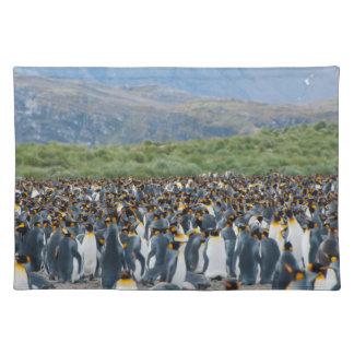 South Georgia. Salisbury Plain. King penguins 3 Placemat