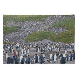 South Georgia. Salisbury Plain. King penguins 4 Placemat