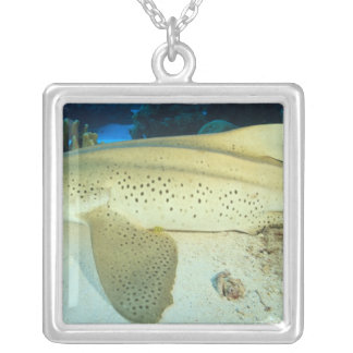 South Huvadhoo Atoll, Southern Maldives, Silver Plated Necklace