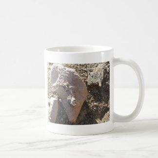 South Kiabab Grand Canyon National Park Fossils Basic White Mug