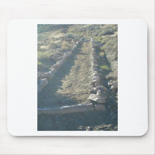 South Kiabab Grand Canyon National Park Fossils Mouse Pad
