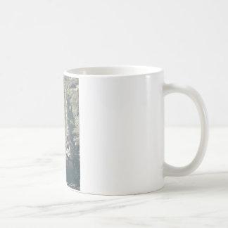 South Kiabab Grand Canyon National Park Fossils Coffee Mug