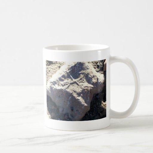 South Kiabab Grand Canyon National Park Fossils Mugs