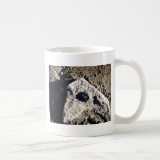 South Kiabab Grand Canyon National Park Fossils Coffee Mugs