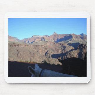 South Kiabab Grand Canyon National Park Mule Ride Mouse Pad