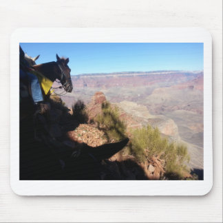 South Kiabab Grand Canyon National Park Mule Ride Mouse Pads