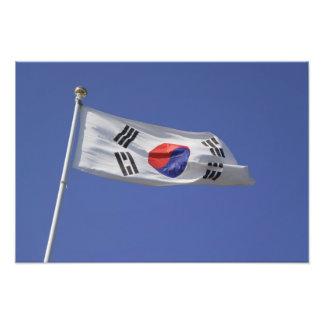 South Korean Flag Art Photo