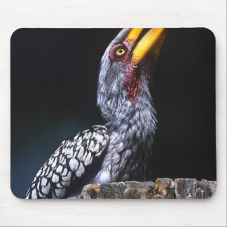 South Kruger National Park Yellow-billed Mouse Pad
