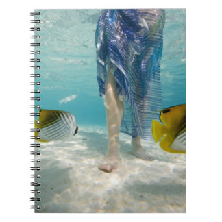 South Pacific, Bora Bora, female tourist walking 2 Notebooks