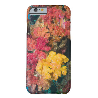 South Pacific, Fiji, Rainbow Reef in Taveuni Barely There iPhone 6 Case