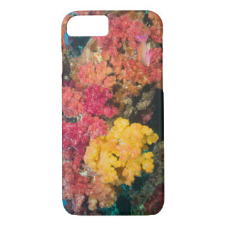 South Pacific, Fiji, Rainbow Reef in Taveuni iPhone 7 Case