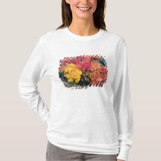 South Pacific, Fiji, Rainbow Reef in Taveuni T-Shirt