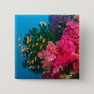 South Pacific, Fiji, Viti Levu, Bligh Water, 15 Cm Square Badge