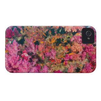 South Pacific, Fiji, Viti Levu, Bligh Water, iPhone 4 Cover