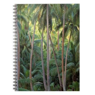 South Pacific, French Polynesia, Bora Bora. Notebooks