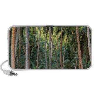 South Pacific, French Polynesia, Bora Bora. iPod Speaker