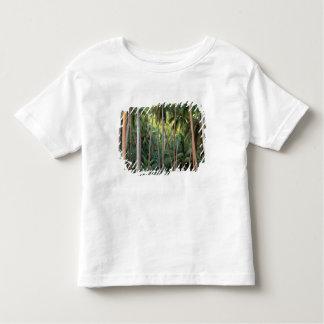 South Pacific, French Polynesia, Bora Bora. T-shirt