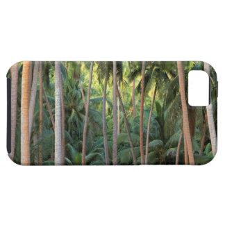 South Pacific, French Polynesia, Bora Bora. Tough iPhone 5 Case