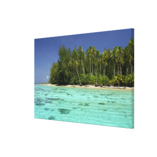 South Pacific, French Polynesia, Moorea 2 Canvas Print