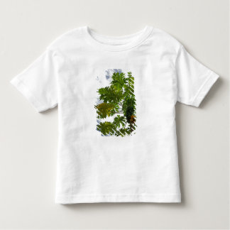 South Pacific, French Polynesia, Moorea. 2 Toddler T-Shirt
