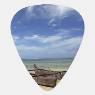 South Pacific, French Polynesia, Moorea. Guitar Pick