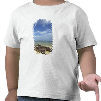 South Pacific, French Polynesia, Moorea. T Shirts