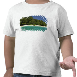 South Pacific, French Polynesia, Moorea Tee Shirts