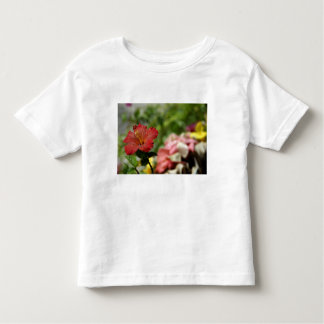 South Pacific, French Polynesia, Society 2 Toddler T-Shirt