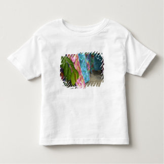 South Pacific, French Polynesia, Society Toddler T-Shirt