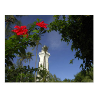 South Pacific, French Polynesia,Tahiti. Hibiscus 3 Postcard