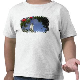 South Pacific, French Polynesia,Tahiti. Hibiscus 3 Shirt