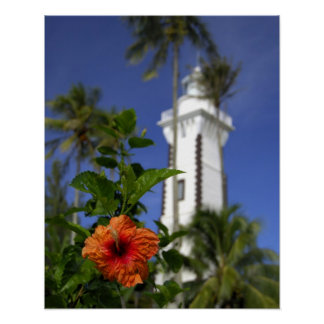South Pacific, French Polynesia,Tahiti. Hibiscus Poster
