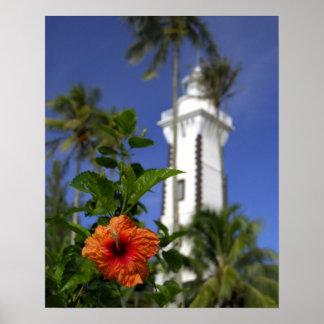 South Pacific, French Polynesia,Tahiti. Hibiscus Print