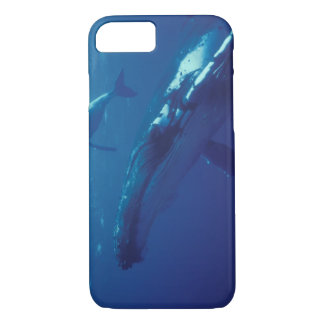 South Pacific, Tonga. humpback whale and calf iPhone 8/7 Case