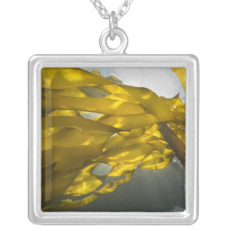 South side of Ewing Island, San Juan Islands, Silver Plated Necklace