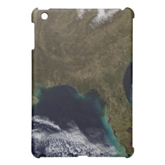 Southeastern United States Cover For The iPad Mini