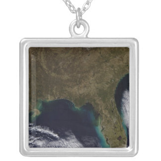 Southeastern United States Silver Plated Necklace