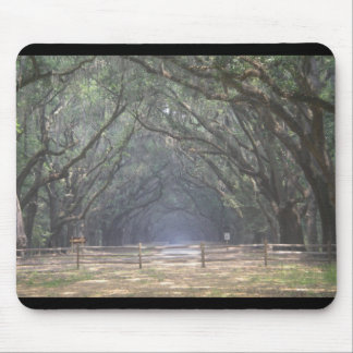 southern charm mouse mat